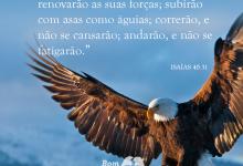 Photo of 16 Versículos Bíblicos sobre Conforto e Consolo