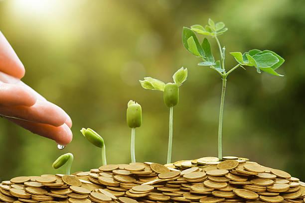 Photo of 14 Versículos Bíblicos sobre Prosperidade em Salmos